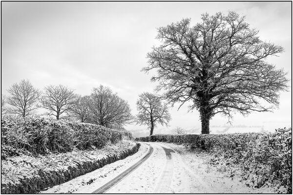 Winter in Wales - Jane Evans