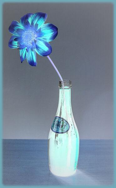 Blue - Ian Ledgard