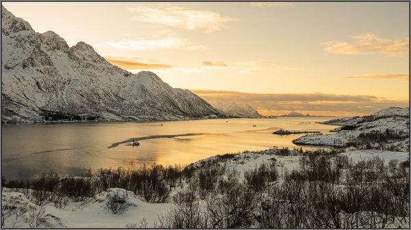 Golden fjord - Ian Ledgard