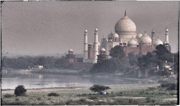Taj Mahal - Jane Evans