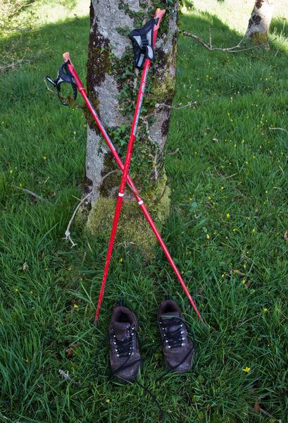 Lockdown Nordic walking - Sue Hiley