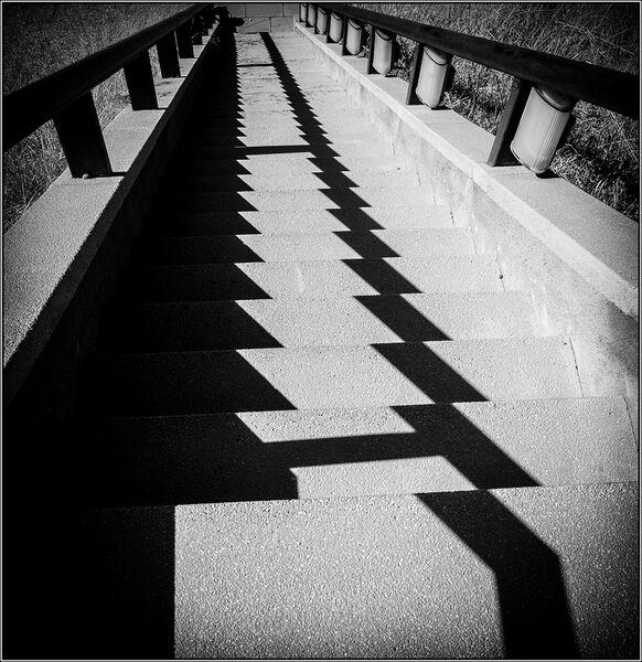 Shadow teeth - Ian Ledgard
