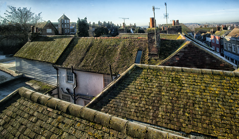 Medieval rooftops.