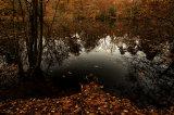 Secret autumnal pool at dusk