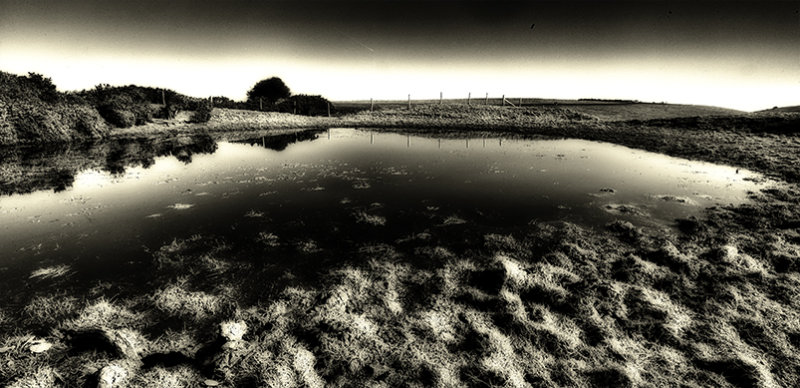 Downland dewpond