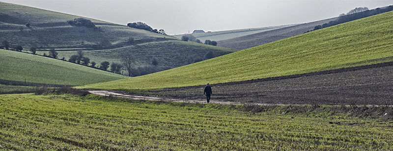 3 Stunning Sussex Downland valleys a short walk from Lewes: #1 -  Telscombe
