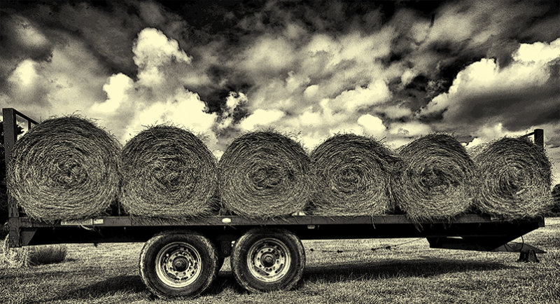 Farming circles