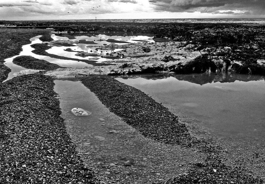 Low tide, Rottingdean (ii)