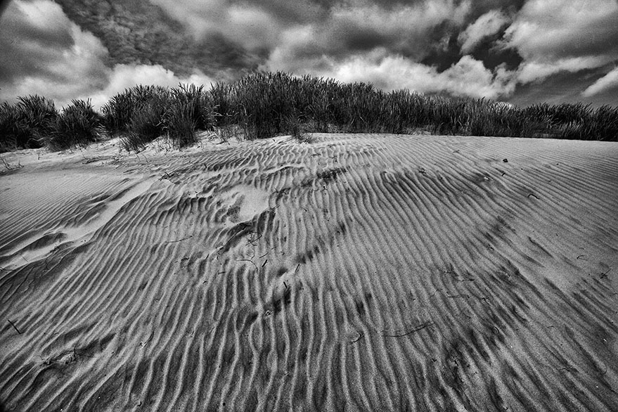 Patterns in the dune