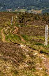 The Stevenson Trail