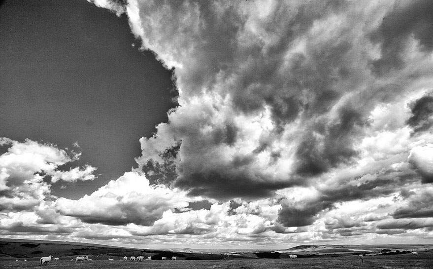 Downland skyscape