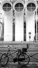 Parisienne contrasts