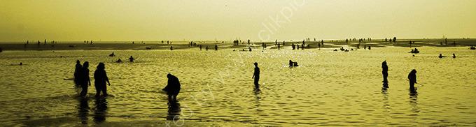 Sur le plage (2)