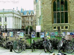 Bicycles near Kings College, Cambridge