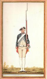 Loup Holland 1772