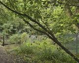 River Chess, Caravan Lane, Rickmansworth