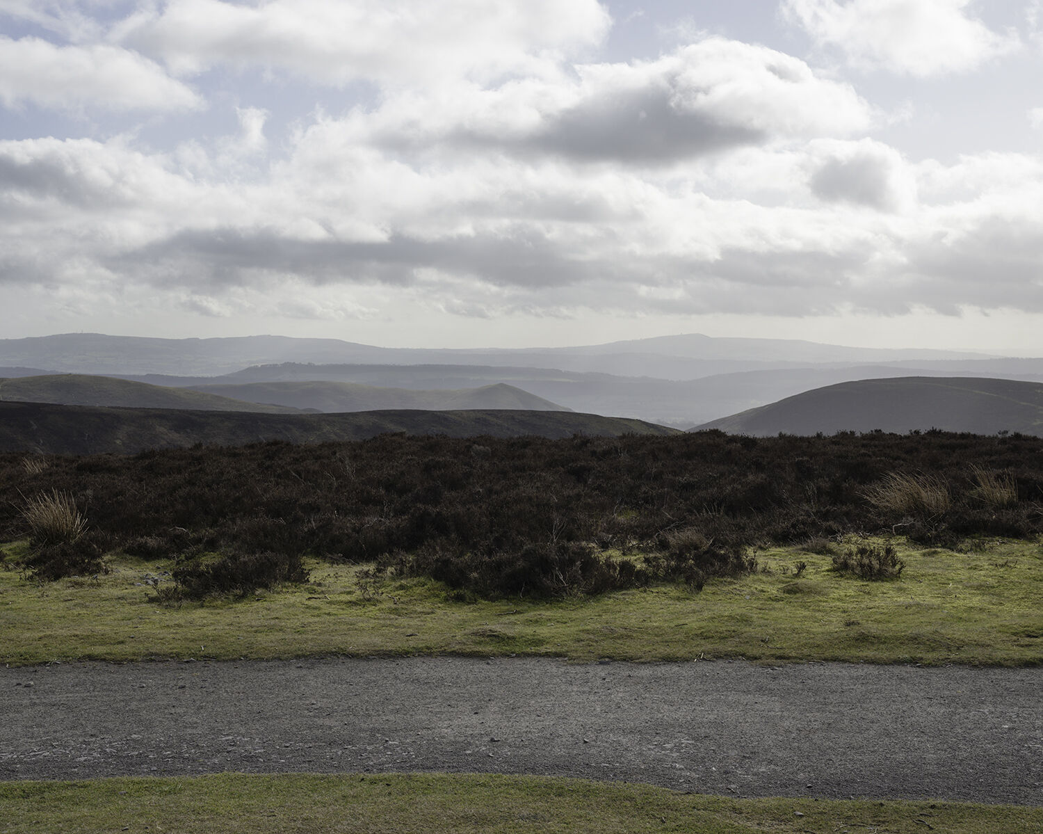 Pole Bank, The Long Mynd, Shropshire (SO 41519 94426) looking SE.