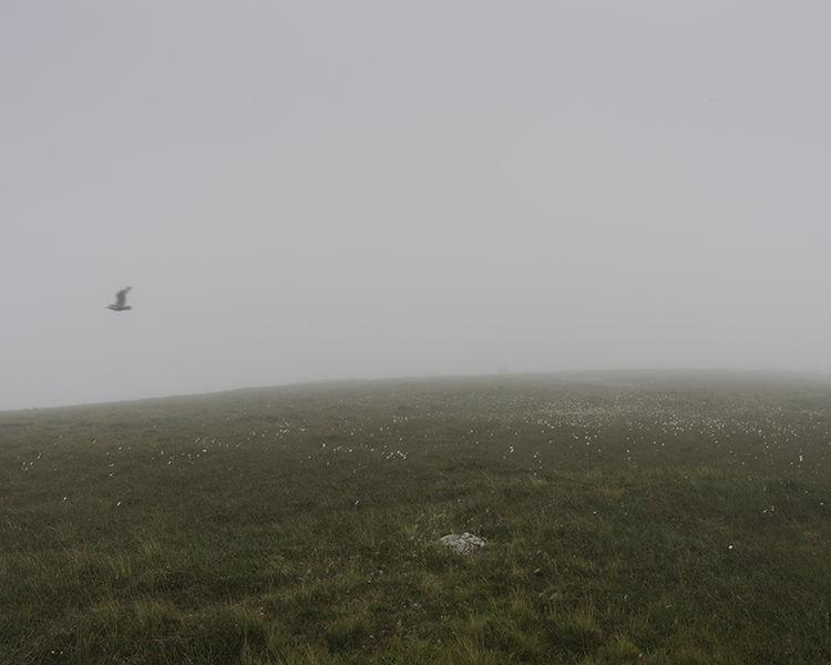 Skiordar, Foula, Shetland (HT 96117 40724) looking NE.