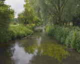 River Colne, Munden