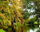Order No 071: Autumn in Christ Church Meadow, Oxford