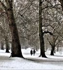 Walking through new snow in Christ Church Meadow, Oxford