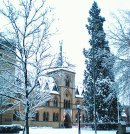 Order No X102: Season's greetings! The Oxford University museum of Natural Science