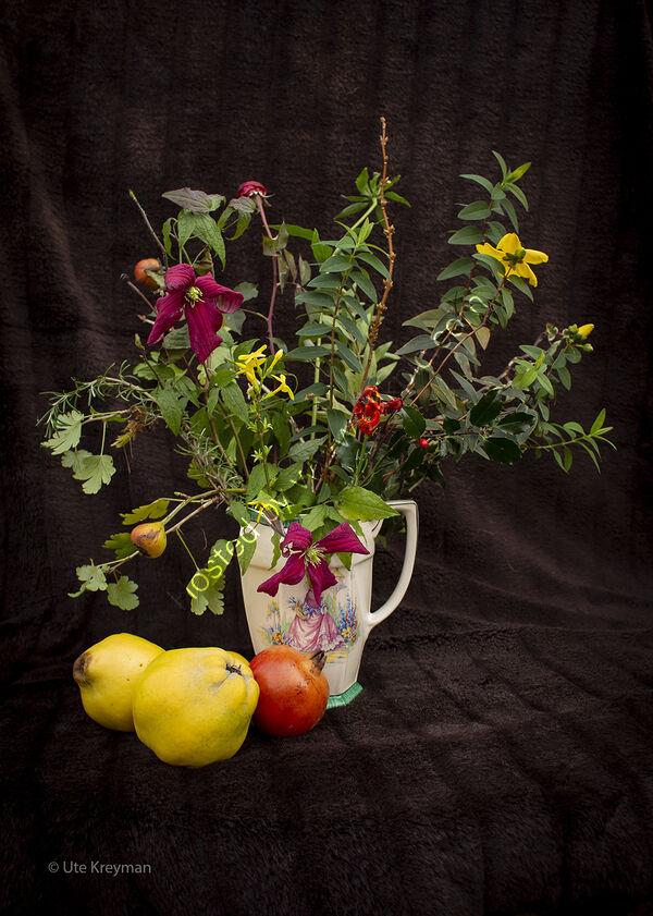 Part of triptych 'Plant Studies '