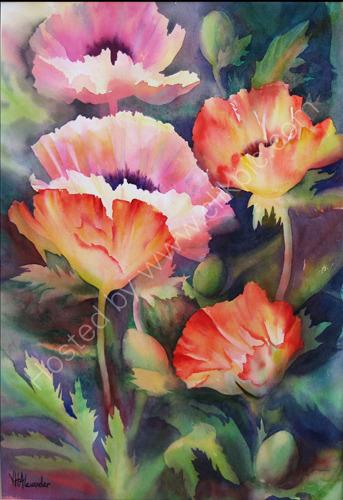 Poppies Orange & Pink S