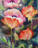 Poppies Orange & Pink