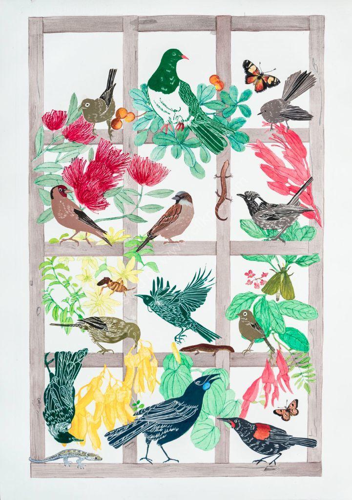 Bird Boxes-3