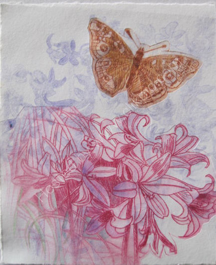 Butterfly. Multiple drypoint print.