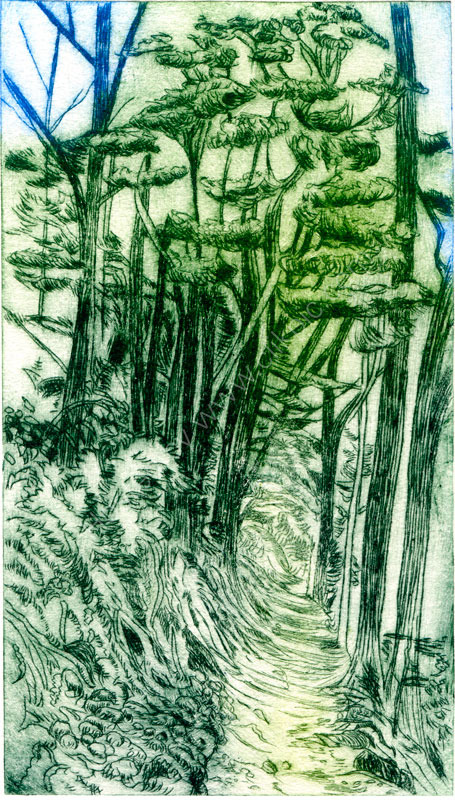 Forest Path. Drypoint print.