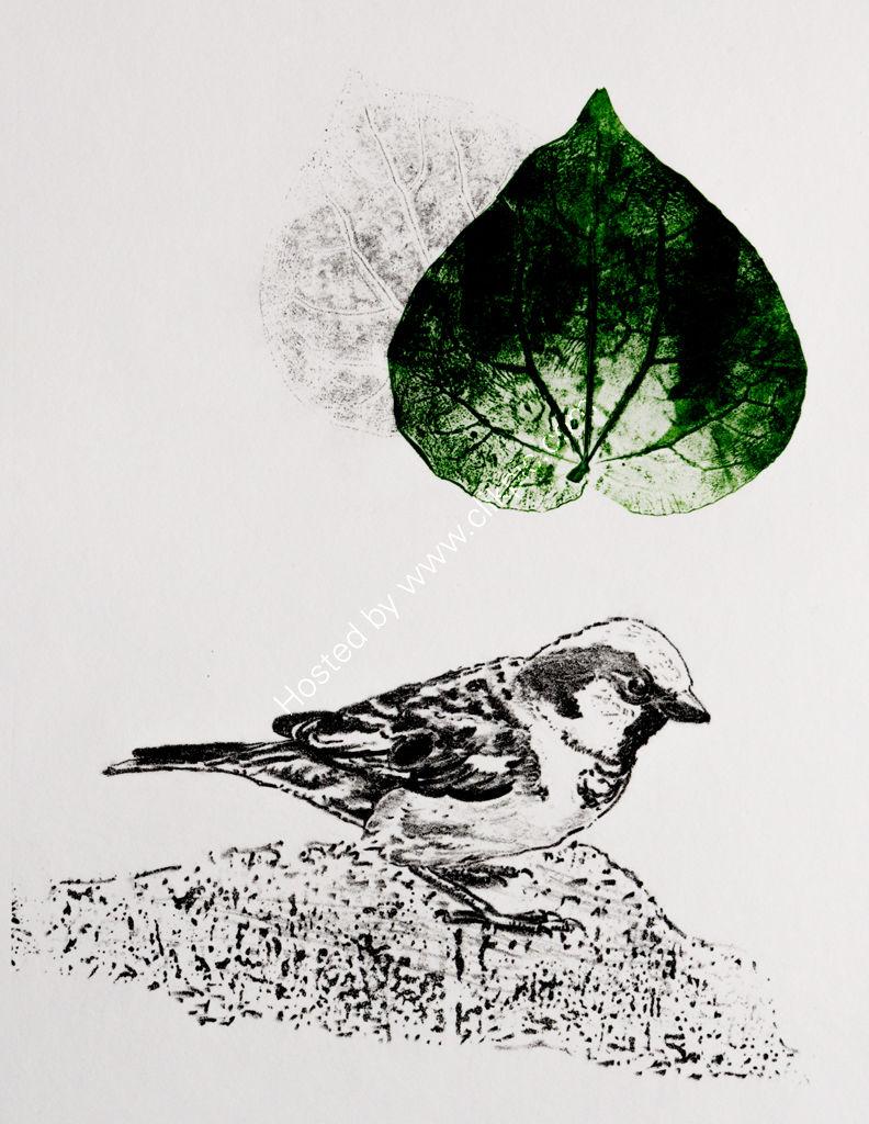 Kawakawa. Stone lithograph and offset image.