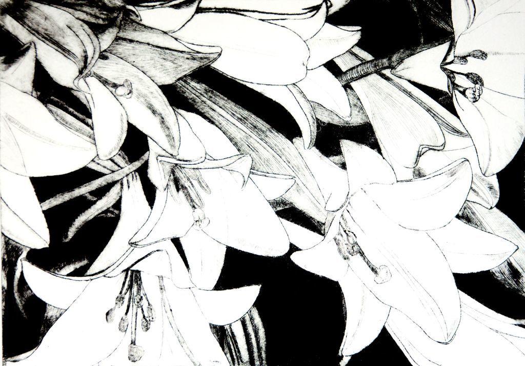 Black Lilies. Drypoint print.