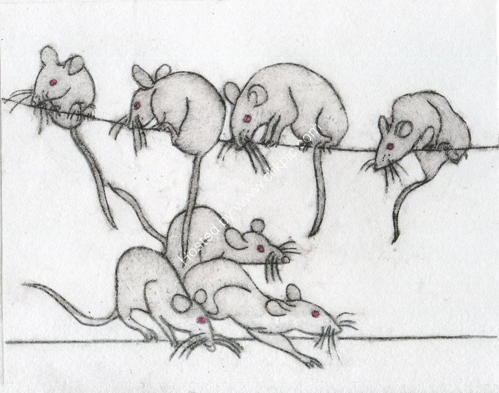 Mice! Drypoint print.