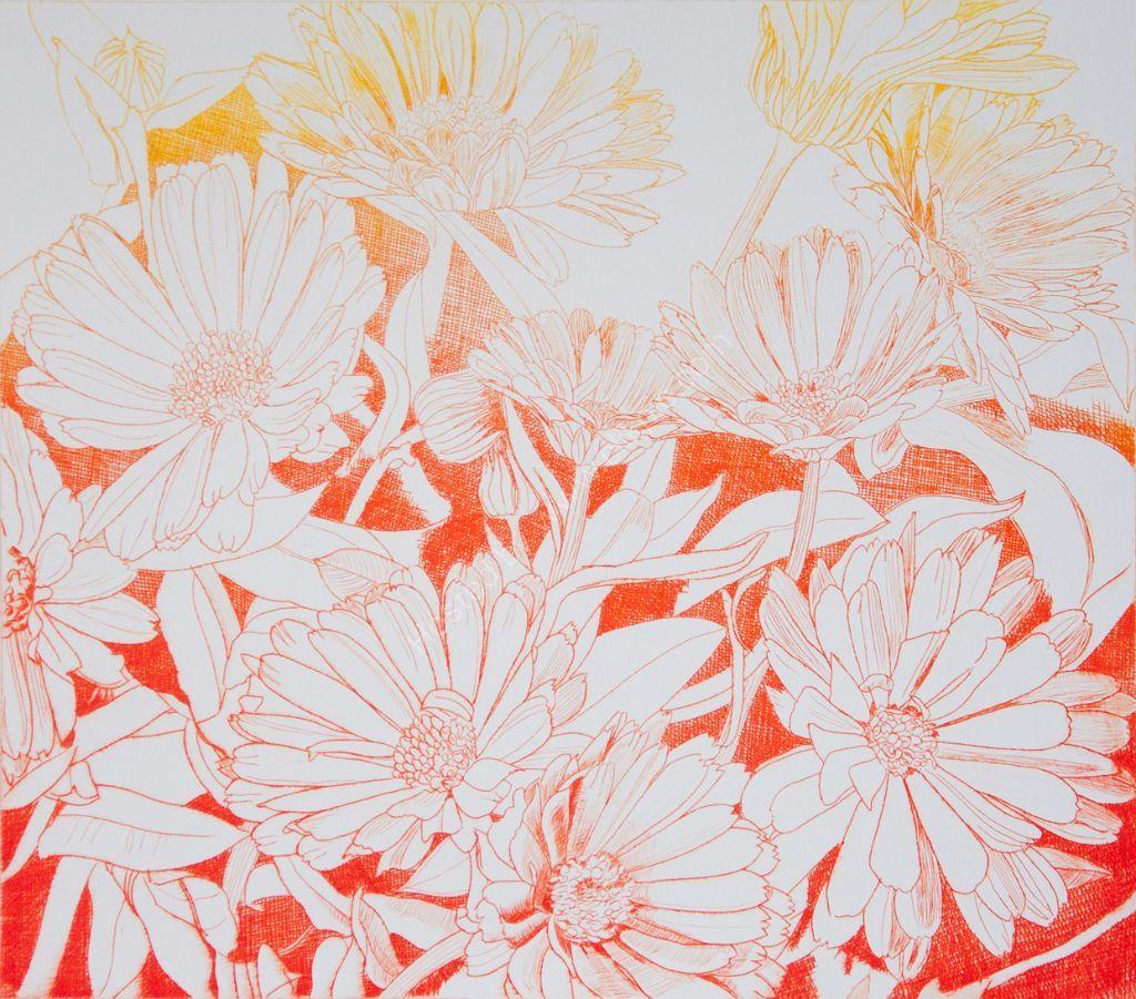Marigolds. Drypoint print.