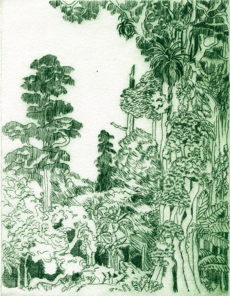 Mixed Forest. Drypoint print