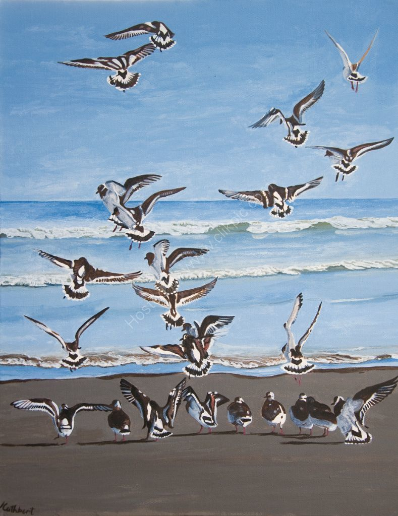 Turnstones. Painting on canvas.
