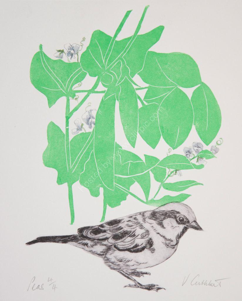 Peas and Sparrow. Mixed media.