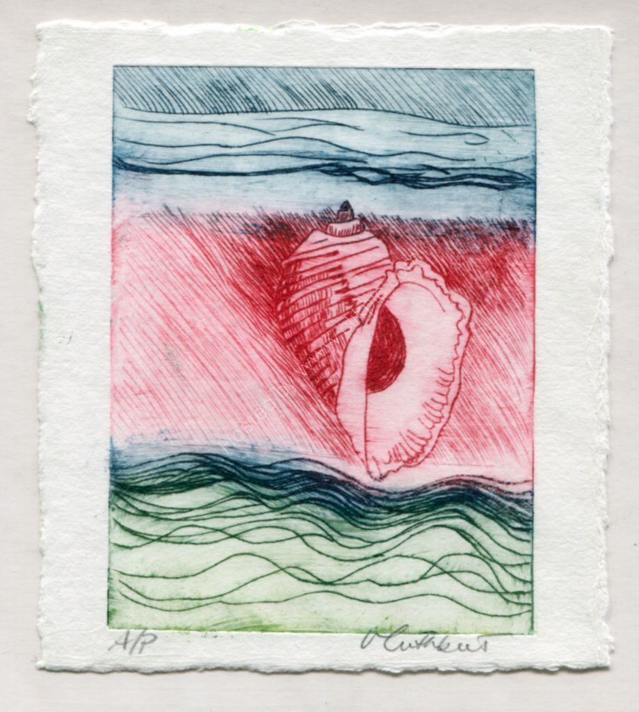 Shell. Drypoint print.