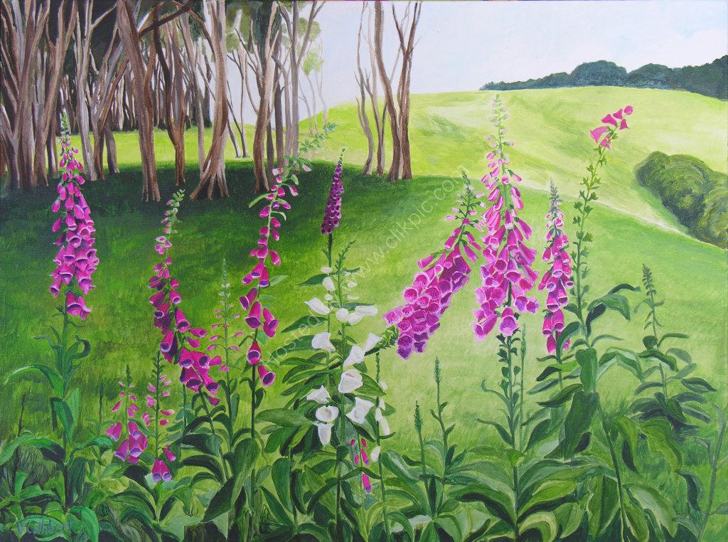 Foxgloves, The Glen, Otago. Painting on canvas.