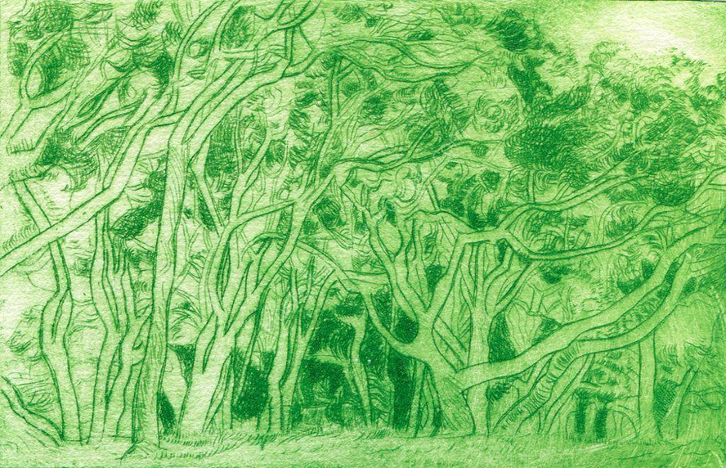 Trees at Wenderholm. Drypoint print.