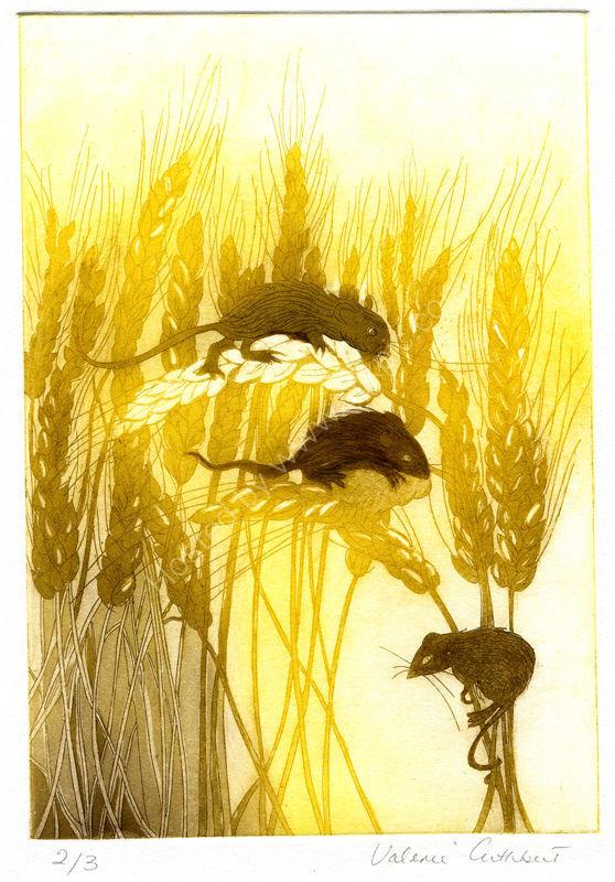 Wheatfield and Mice