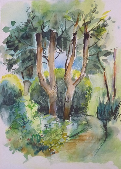 Trees at Marlay Park