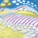 mix'n'match drystane sheep