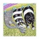 wee stripes