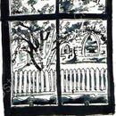 #windowstills58
