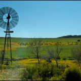 Windmill in Namaqualand