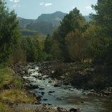 Drakensburg Gardens Stream-6341