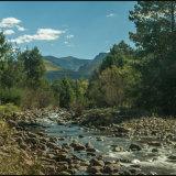 Drakensburg Gardens Stream-